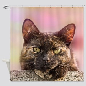 Brown Cat 2 Shower Curtain