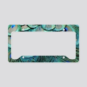 Natural Peacock Tail Eyes Feathers License Plate H