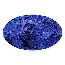 Indigo Flower Pattern Sticker (Oval)