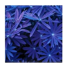 Indigo Flower Pattern Tile Coaster