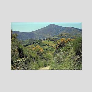 Mountains on El Camino near O'Ceb Rectangle Magnet