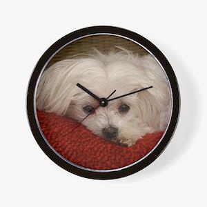 Cute Maltese Wall Clock