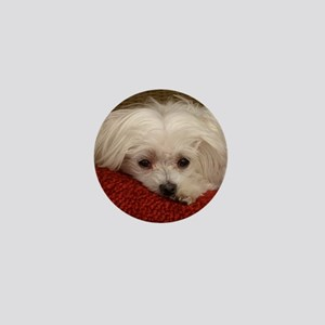 Cute Maltese Mini Button