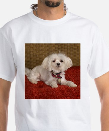 Maltese White T-Shirt