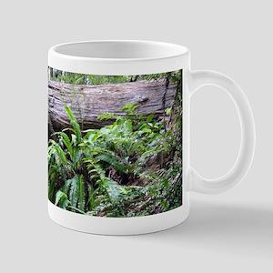 Renewal Mugs