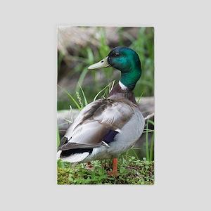 Mallard Duck Area Rug