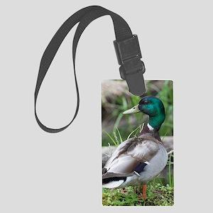 Mallard Duck Large Luggage Tag