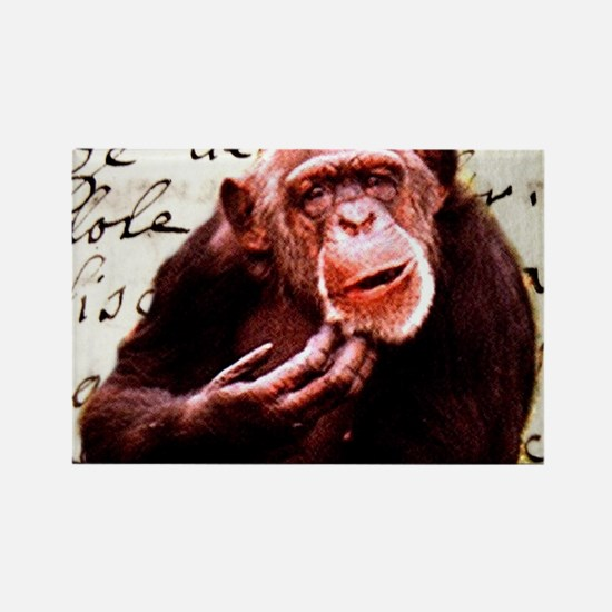 funny chimpanzee Magnets