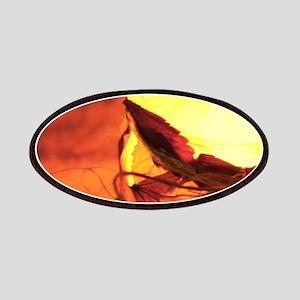 Lantern Patch