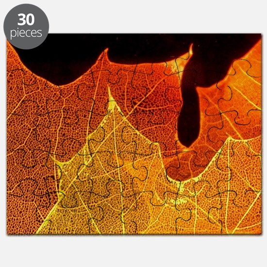 See through Leaves Puzzle