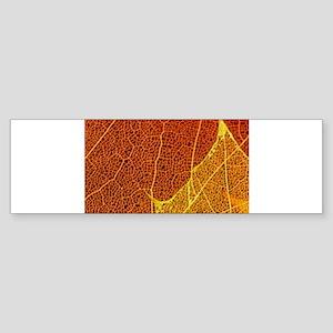 See through Leaves Sticker (Bumper)