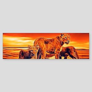Lion Family Bumper Sticker