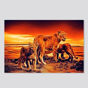Lion Family Postcards (Package of 8)
