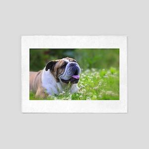 Nora Bulldog 5'x7'Area Rug