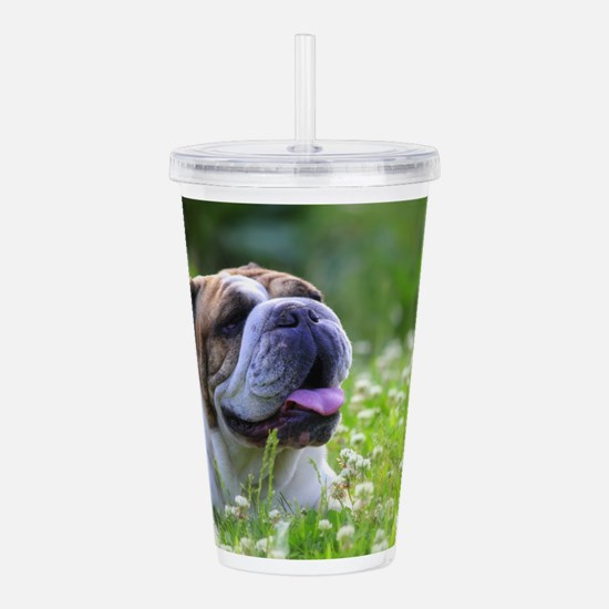 Nora Bulldog Acrylic Double-wall Tumbler