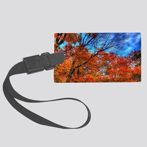 Unusual sky Large Luggage Tag
