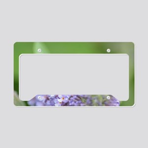 Bumble on Buddleia License Plate Holder