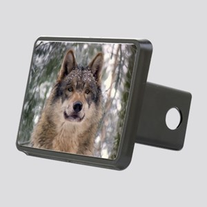 Wolf in Woods Rectangular Hitch Cover