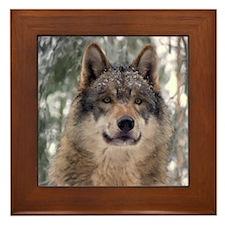 Wolf In Woods Framed Tile