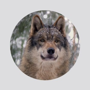 Wolf In Woods Round Ornament