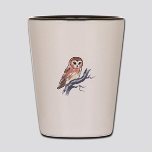 SAW WHET OWL Shot Glass