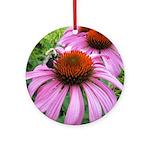 Bumblebee on Purple Illinois Coneflower Round Orna
