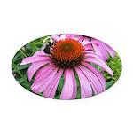 Bumblebee on Purple Illinois Coneflower Oval Car M