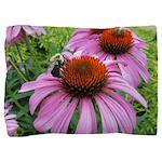 Bumblebee on Purple Illinois Coneflower Pillow Sha