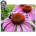 Bumblebee on Purple Illinois Coneflower Puzzle