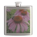 Bumblebee on Purple Illinois Coneflower Flask