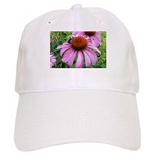 Bumblebee on Purple Illinois Coneflower Baseball C