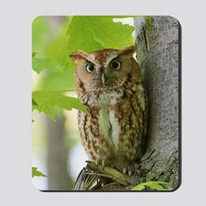 Red Sreech Owl Mousepad