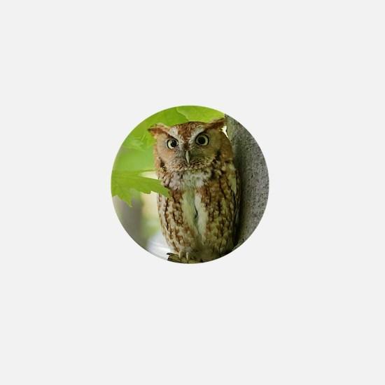 Red Sreech Owl Mini Button