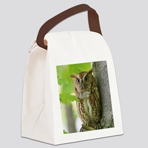 Red Sreech Owl Canvas Lunch Bag