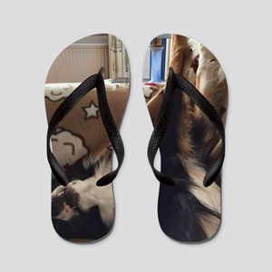 Crisp Flip Flops