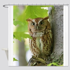 Red Sreech Owl Shower Curtain