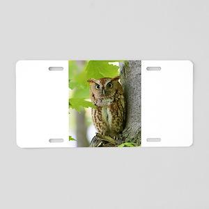 Red Sreech Owl Aluminum License Plate