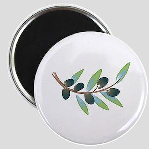 OLIVE BRANCH Magnets