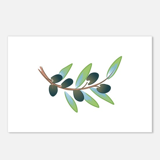 OLIVE BRANCH Postcards (Package of 8)