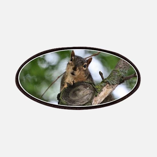 Cool Cute squirrel Patch