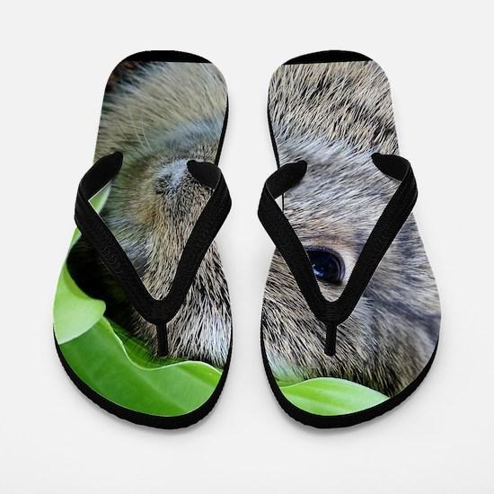 Baby Bunny Flip Flops
