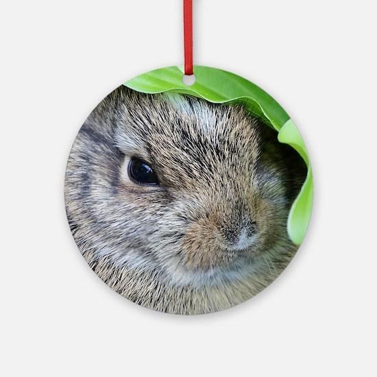 Baby Bunny Round Ornament