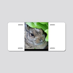 Baby Bunny Aluminum License Plate