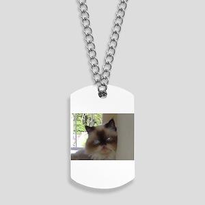seal point himalayan Dog Tags