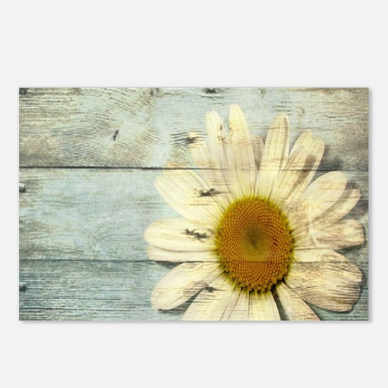 shabby chic country daisy Postcards (Package of 8)