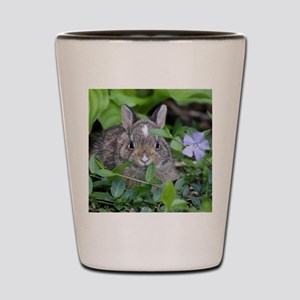 Baby Bunny Shot Glass