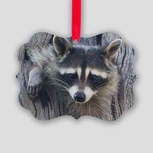 Raccoon in a Tree Picture Ornament