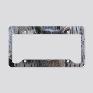 Raccoon in a Tree License Plate Holder