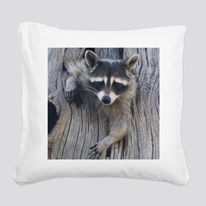 Raccoon in a Tree Square Canvas Pillow