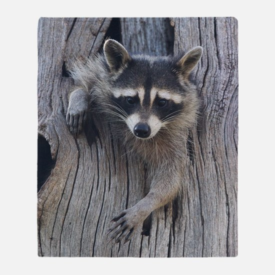 Raccoon in a Tree Throw Blanket